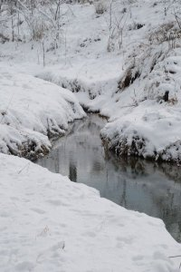 A creek flowing between snowy banks