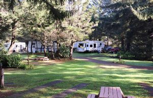 A picnic table and parked RVs