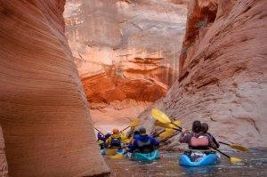 couple paddling on kayak