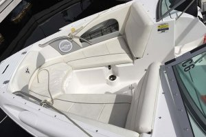 21' Campion Ski boat for rent on Lake Powell