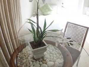 Hotel Seacrest Seashell Room table plant