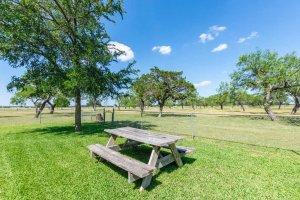 an outdoor picnic table