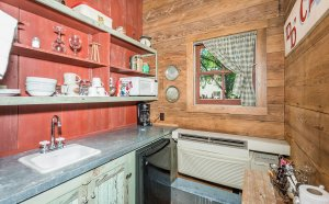 Kitchen counter and shelves