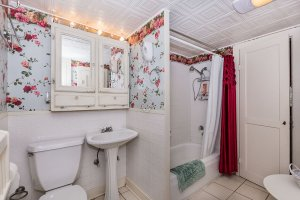 Grape Arbor Downstairs Bathroom