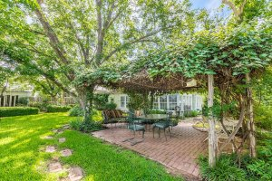 Grape Arbor with Vines