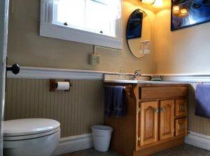 Toilet across from sink countertop in bathroom