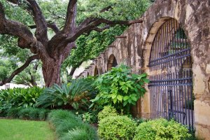 The Alamo outside wall