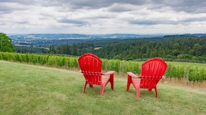Roya Vineyard and Cottages red outdoor chairs looking at valley