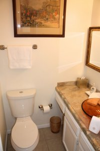 bathroom with toilet and counter