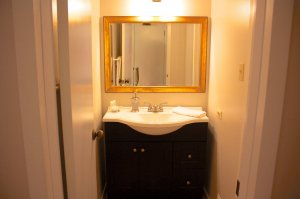 gold mirror frame and bathroom sink