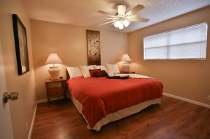 bedroom with ceiling fan and red bedspread