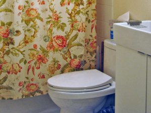 Toilet Near Floral Bath Curtain