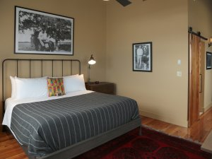 One King Bed with feather throw pillow and artwork above bed