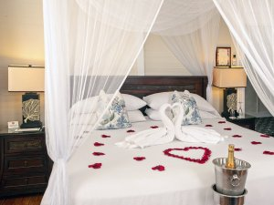 rose petals on bed with swans made of towels