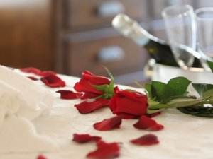 rose petals with champagne