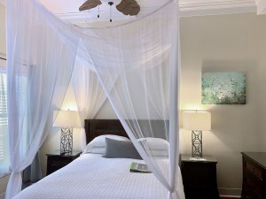 bed with airy canopy