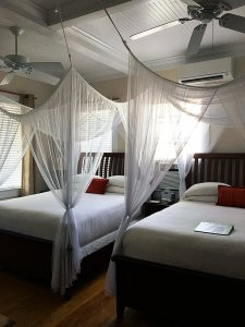 two ceiling fans in room with two beds