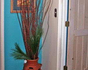 Plant in Hallway Near Door