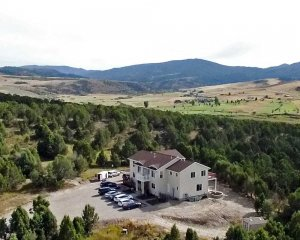Manor among trees Aerial View