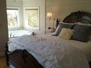 bed with bathtub in corner