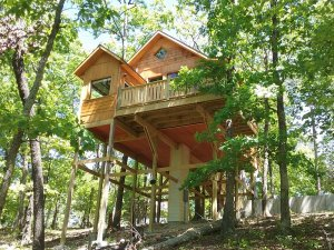 Treehouse on stilts high in the trees
