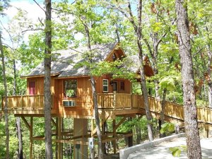 wooden treehouse with side deck
