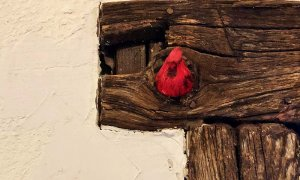 carved cardinal bird in doorframe