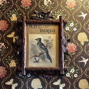 Picture of bird hung on wall
