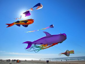 Fish kites in the wind