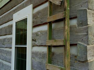 Old wood ladder leaned against wall of cabin