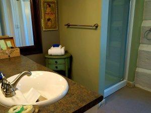 Bathroom sink across from shower