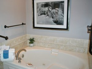 Picture frame above whirlpool tub in bathroom