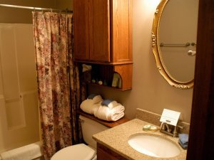 Shower curtain, cabinet, toilet, sink, and mirror