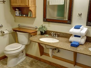 Toilet, sink, and mirror in bathroom