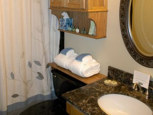 Toilet and towels next to sink and shower in bathroom
