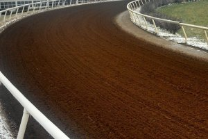 dirt horsetrack