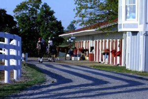 horse riders by horse stalls