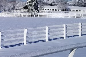 white fence in the snow