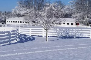 picket fences in the snow