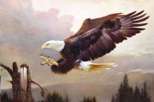 bald eagle lighting upon a branch