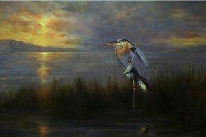 great blue heron watching sunset