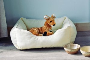 Deer plushy sitting in small pet bed