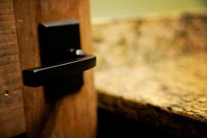 Sleek doorhandle on wood door