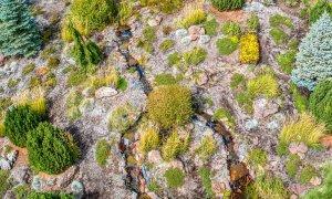 Stream flowing through rocky hill