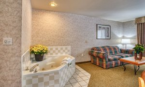 Bathtub and couch in living room