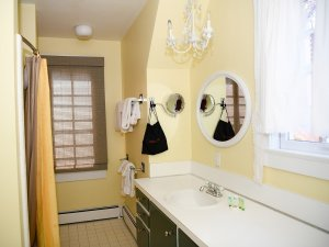 Sink, mirror, and towel racks across from shower