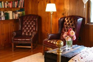Two leather sitting chairs
