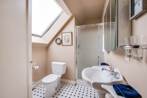 Toilet, shower, and sink in bathroom with skylight