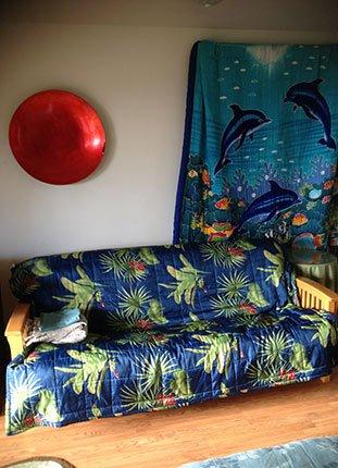 dolphin room in Kona Hawaii Guest House in Kona, Hawaii