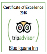 Blue Iguana TripAdvisor Button